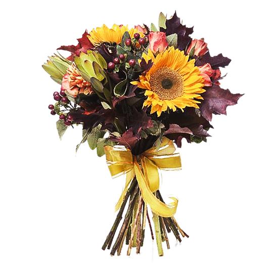 Доставка цветов по жлобину генномодифицированные цветы купить