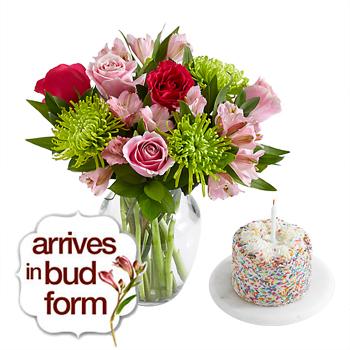 Цветок доставка цветов и подарков в сша, картона цветной бумаги